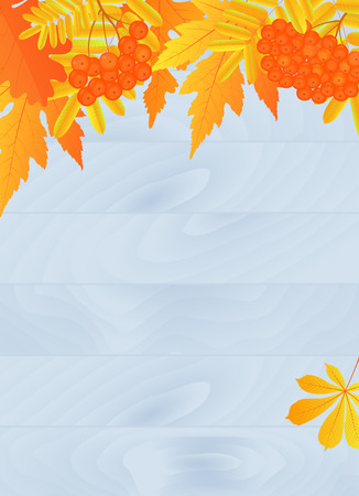 Autumn poster design with yellowed leaves and rowan berries. Design for banner, flyer, discount for seasonal sale.