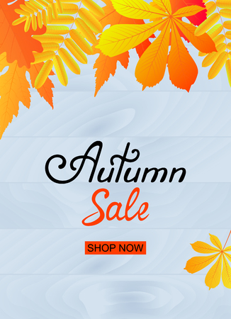 Autumn sale poster design with yellowed leaves. Template for discount flyer, voucher, banner