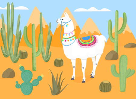 Amusing muzzled llama with national Bolivian ornaments in the wild. Desert with cacti. Cactus. The mountains