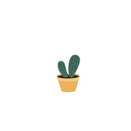 Cactus in a pot. Potted home plant