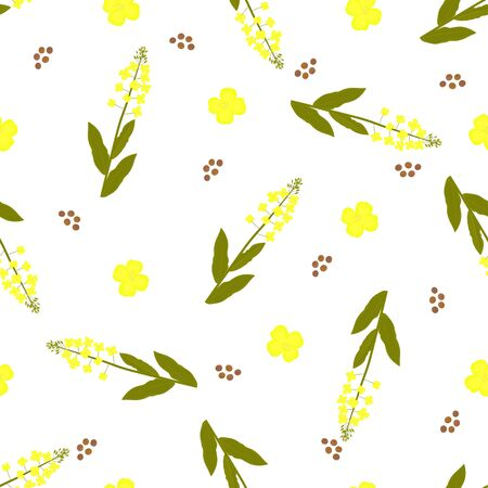 Yellow canola flowers and seeds. Rapeseed plant seamless pattern Foto de archivo - 127901257