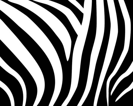 Zebra pattern. Abstract geometric pattern. Black and white animal skin background. Trendy stylish vector wallpaper. Иллюстрация