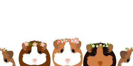 Cute guinea pig or cavy with pink and white flower crown on white background. Cartoon mouse or small rodent. Childish  illustration.