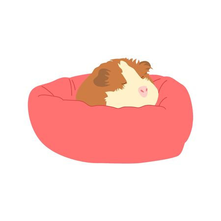 Cute mouse sleeping on a pink bed. Doodle guinea pig sleeping isolated on white background. Illustration