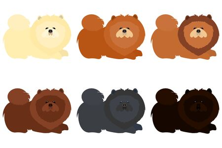 Set of cute chow chow dogs isolated on white background. Cartoon dog icon. Illustration