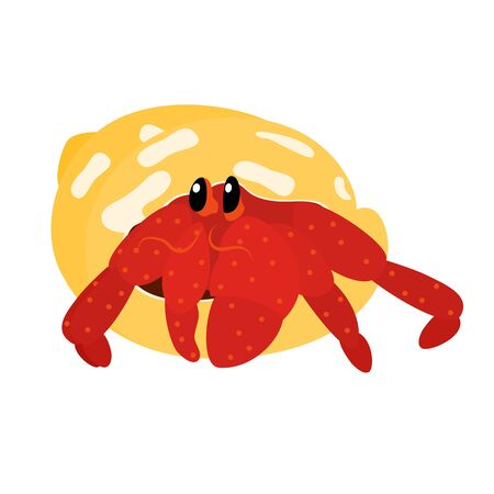 Cute cartoon hermit crab isolated on white background. Crab icon vector. Hand drawn childish vector illustration. Illustration