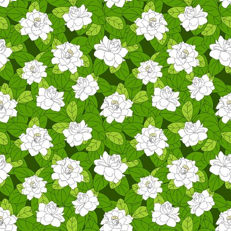 Summer flowering shrub in full bloom of Gardenia jasminoides or Cape jasmine flower seamless pattern background. Tropical Gardenia flower bush background. Great for wallpaper, card, packaging, fabric