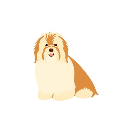 Havanese Dog isolated on white background. Cartoon dog puppy icon vector. Hand drawn childish vector illustration. Great for icon, symbol, logo, children's book.