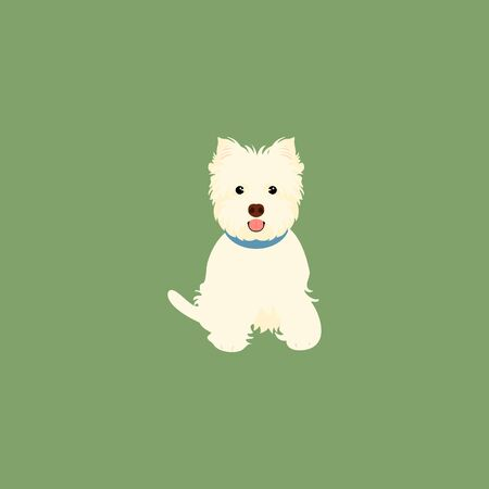 West Highland White Terrier or Westie sitting isolated on green background. Cartoon dog puppy icon vector.