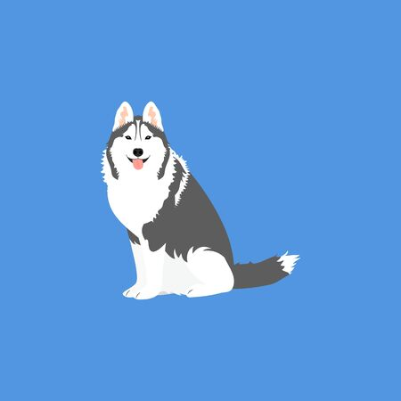 siberian husky dog sitting isolated on blue background. Cartoon dog puppy icon vector. Hand drawn childish vector illustration. Great for icon, symbol, logo, children's book.