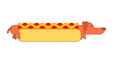 Hot dog dachshund and bun.