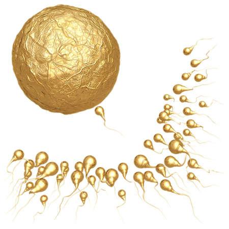 esperma: Delante del paquete