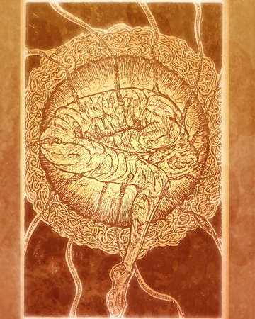 Human Figure & Brain Merged inside a Cell Structure photo