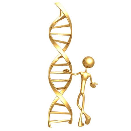 Presenting DNA