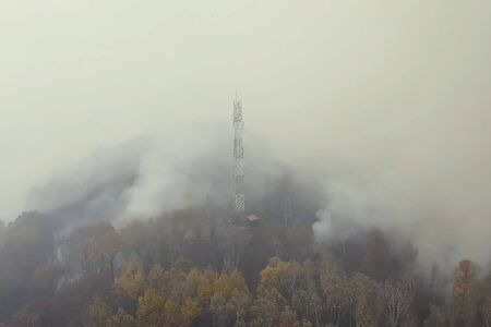 Fire in the forest, burning trees and grass. Natural fires in Russia. 写真素材 - 131909861