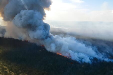 Fire in the forest, burning trees and grass. Natural fires in Russia. 写真素材 - 131909434