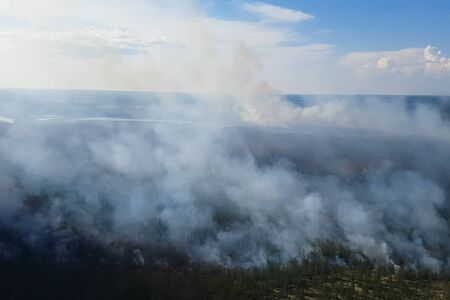 Fire in the forest, burning trees and grass. Natural fires in Russia. 写真素材 - 131909876