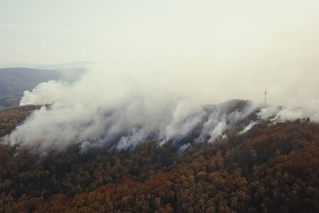 Fires in the Russian forest, Transbaikal forest in fire, burning of forests 写真素材 - 131910370