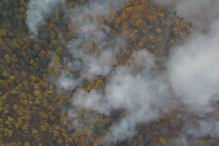 Fires in the Russian forest, Transbaikal forest in fire, burning of forests 写真素材 - 131910642