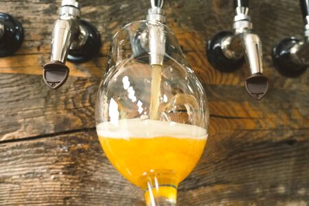 Pouring beer into a glass from the tap at the bar. Beer bottling.