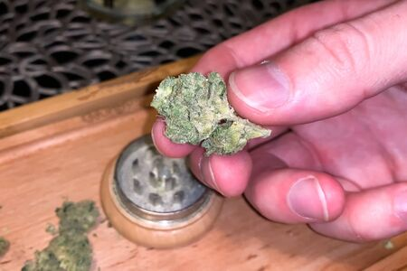 Small dried cannabis inflorescence. Dope marijuana from dried hemp inflorescences. 写真素材