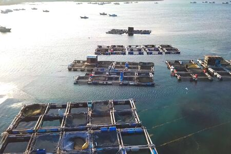 Fish farm in coastal waters. Rectangular cages for fish and crustaceans.