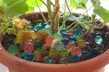Glass marbles balls in a pot with a houseplant.