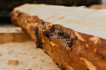 An uncut pine log. Building wood materials. Stock Photo