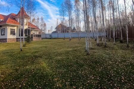 New house with a plot planted with birch trees. Beautiful home ownership