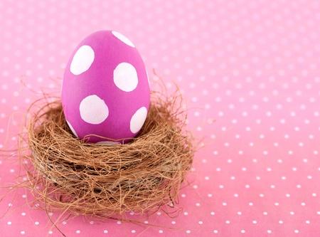 둥지에 핑크 부활절 달걀을 그렸다.