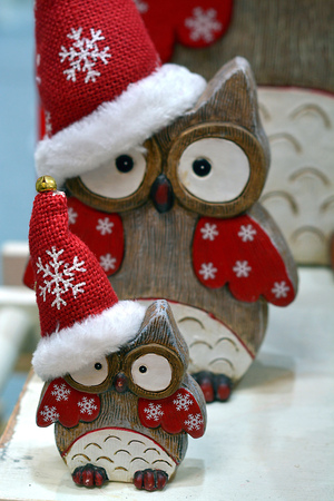 Christmas owls with red cap
