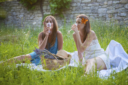 Young Women On Meadow Drinking Wine, Croatia, Dalmatia, Europe LANG_EVOIMAGES