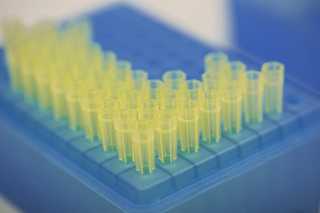 Pipetting Plate LANG_EVOIMAGES