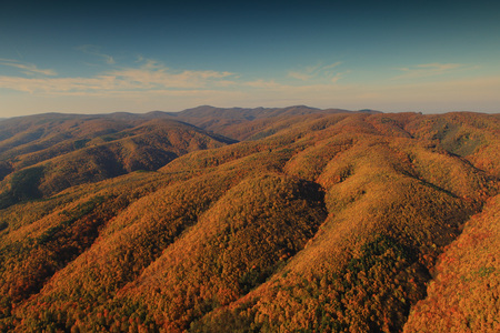 Aerial view of autumn forest in hilly landscape, Croatia