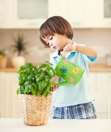 asian gardening: Cute little boy watering a plant in his house. Stock Photo