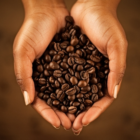 African womans hands holding coffee beans.