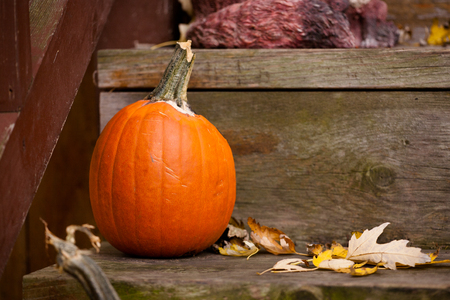 Seasonal Brown and Orange Porch Pumpkin Halloween Scene Stock Photo - 119275654