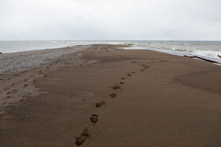 Nature Outdoors Point Pelee National Park Tip Footprints in the sand