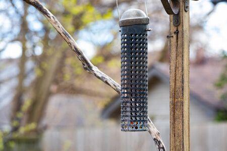 Miscallaneous Urban Bird Watching Backyard Empty Peanut Feeder