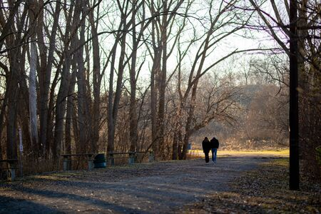 Unidentified Couple Walking Path in Forest Away From the Viewer