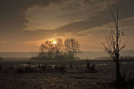 sun on the fish pond Kotvice Stock Photo