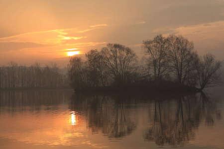 sunrise fish pond