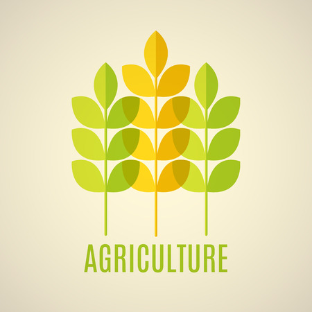 Agricultural vector emblem with green and yellow cereal ears. with transparent elements.