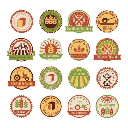 avena: Conjunto de 16 insignias agrícolas y ganaderas (cultivo de cereales - agrícolas orgánicos y alimentos naturales saludables). Diseño minimalista y los colores cálidos (verde, amarillo, marrón, beige) Vectores