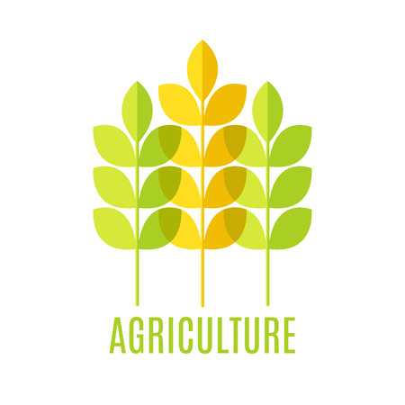cereal: Agricultural emblem with green and yellow cereal ears on a white background (isolated).