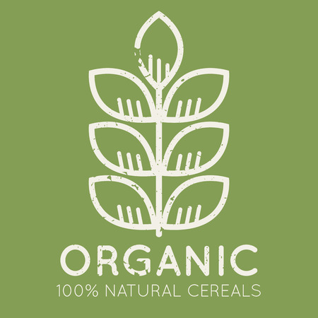 cereal ear: Agricultural emblem with cereal ear in flat linear style on a green background. 100 percent  natural organic cereals. Grunge texture is easy to remove
