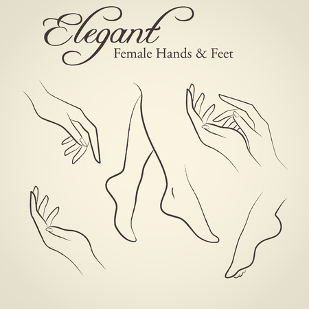 Set of elegant silhouettes in a linear sketch style (female hands and feet). Design elements for skin care industry Çizim