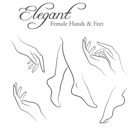 feet care: Set of elegant silhouettes in a linear sketch style (female hands and feet). Design elements for skin care industry Stock Photo