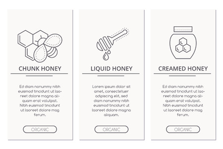 creamed: Organic honey card design template with thin line style illustration of chunk honey, liquid honey and creamed honey. Types of honey layout. Illustration