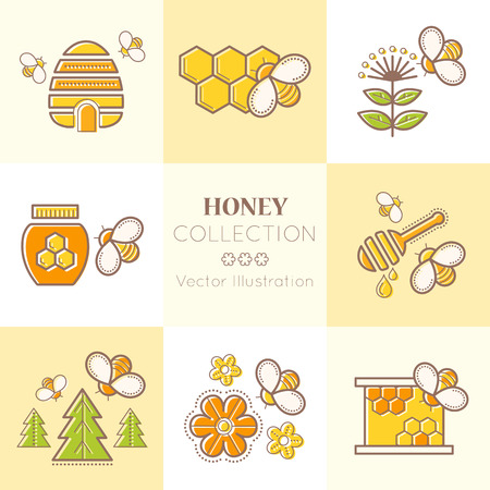nectars: Set of stroked honey emblems. Beekeeping design elements with the honey bee, honeycomb, honey flowers and bee cells. Colorful contoured illustration set